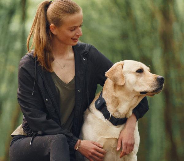4g Dog Tracker