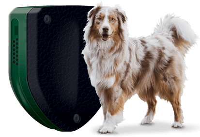 UBEE RANGER GPS DOG TRACKER