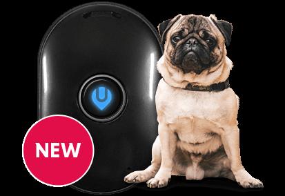 UBEE ROAM gps dog tracker